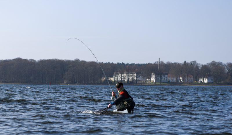 Seatrout -Fishing Lodge Fyn